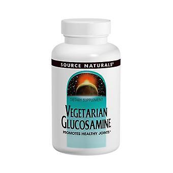 Source Naturals Vegetarian Glucosamine, 750 mg, 120 Tabs