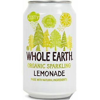 Ganze Erde Bio Limonade Trinken 330ml x24