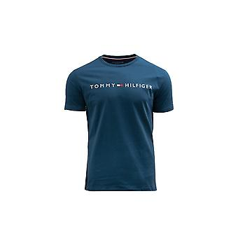 Tommy Hilfiger UM0UM01434C74 universal all year men t-shirt