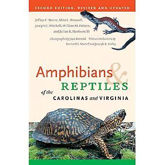 Anfíbios e répteis da Virgínia e Carolinas