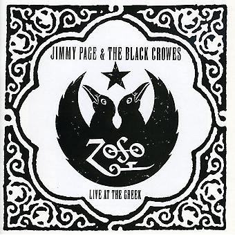 Jimmy Page & Black Crowes - Live at the Greek [CD] USA import
