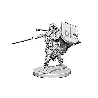 Pathfinder Deep Cuts Unpainted Miniatures Human Female Paladin (Pack of 6)