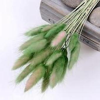 Colorful Dried Rabbit Tail Grass Bunch Flowers Bouquet For Home Wedding