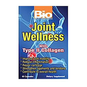 Bio Nutrition Inc Joint Wellness, 60 vcaps