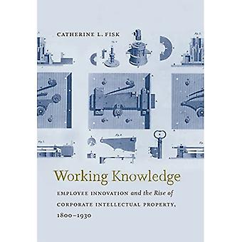 Working Knowledge: Employee Innovation and the Rise of Corporate Intellectual Property, 1800-1930 (Studies in...