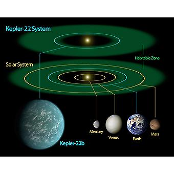 This diagram compares our own solar system to Kepler-22 Poster Print