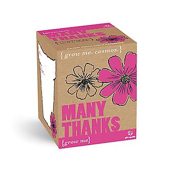 Plant set thanks Cosmos flower seeds 4-piece grow me box