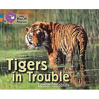 Collins, progrès félins - tigres en difficulté: bleu/cuivre