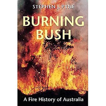 Brennenden Dornbusch: Feuer Geschichte Australiens (Weyerhaeuser Umwelt Buch.) (Weyerhaeuser Umwelt Bücher)