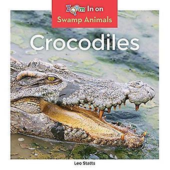Crocodiles (Swamp Animals)