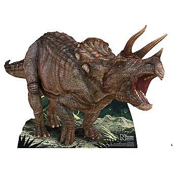 Triceratops Dinosaur Natural History Museum Mini Cardboard Cutout / Standee