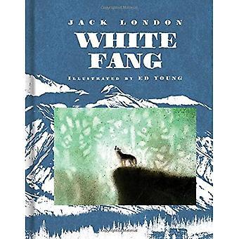 Witte Fang (Scribner Classics)