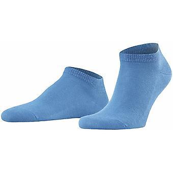 Falke Familie Sneaker Socken - Sky Blue