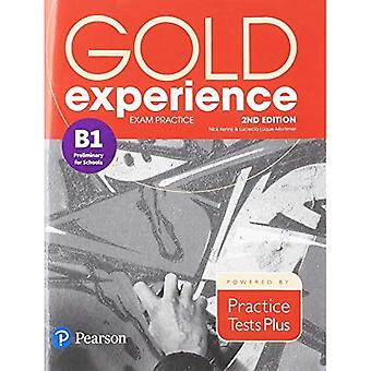Gold Experience 2nd Edition� Exam Practice: Cambridge English Preliminary for Schools (B1) (Gold Experience)