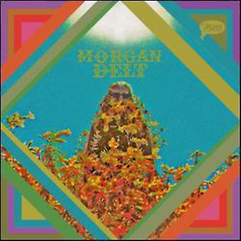 Morgan Delt - Morgan Delt [CD] USA import
