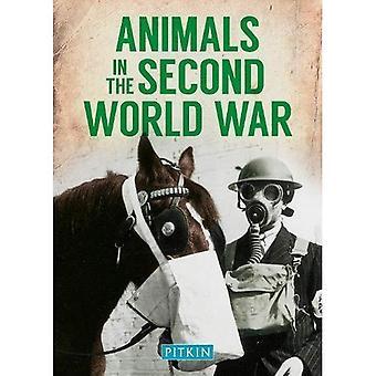 Tiere im zweiten Weltkrieg