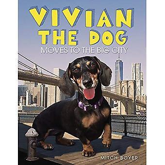 Vivian che il cane si muove verso la grande città