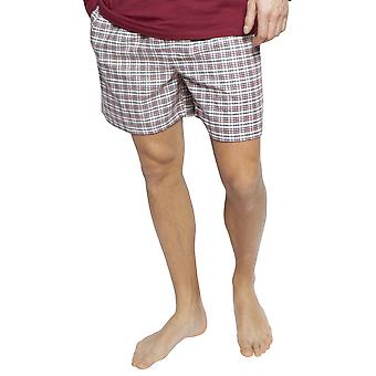 Cyberjammies 6408 Men's Joseph Burgundy Red Mix Check Cotton Pyjama Short