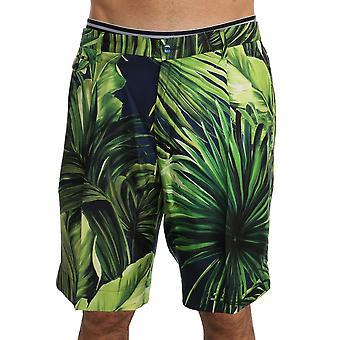 Dolce & Gabbana grün Blätter Druck Seide Shorts