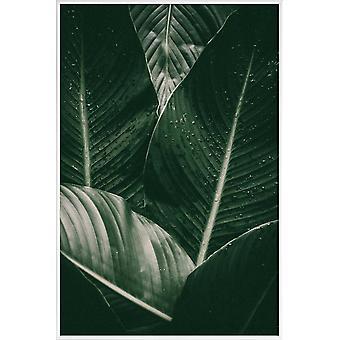 IMPRESSION JUNIQE - Gouttes de palme - Feuilles et plantes Affiche en crème blanche et grise