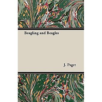 Beagling und Beagles