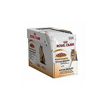 Royal Canin Intense Beauty nourriture pour chat 12 x 85g (1,02 kg) (Pack de 2)