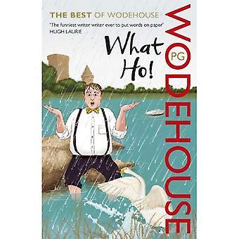 Was Ho!: das beste Wodehouse