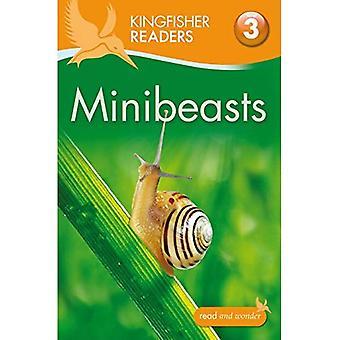 Ijsvogel lezers: Minibeasts (niveau 3: lezen alleen met wat hulp) (Kingfisher lezers niveau 3)