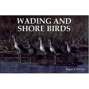 Wading and Shore Birds: A Photographic Study