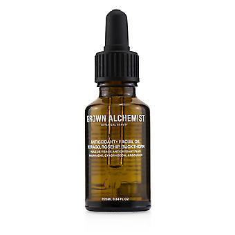 Antioxidante + óleo facial borago, rosehip & erlho 238554 25ml/0,84oz