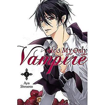 C'est mon seul Vampire, Vol. 1