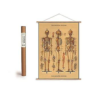 Cavallini Skeleton Wrapping Paper Poster