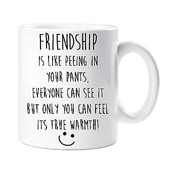 Friendship Is Like Peeing In Your Pants Mug