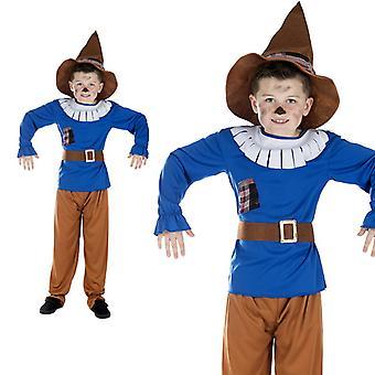 Scarecrow fairy child costume