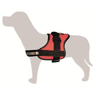 Arquivet Harness Padded Red and Black (Dogs , Collars, Leads and Harnesses , Harnesses)