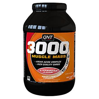 QNT Nutrition Protein 3000 Muscle Mass 4.5 kg