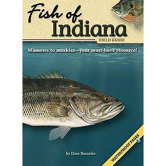 Fish of Indiana Field Guide by Dave Bosanko - 9781591932208 Book
