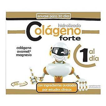 Pinisan Colageno Hidrolizado Forte 30 cápsulas