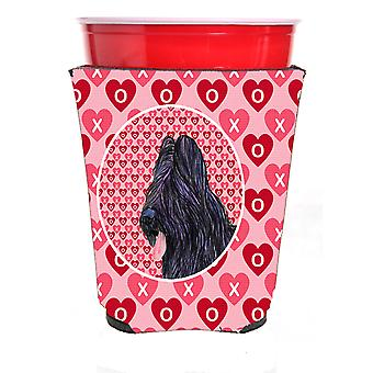 Carolines Treasures  SS4489RSC Briard  Red Solo Cup Beverage Insulator Hugger