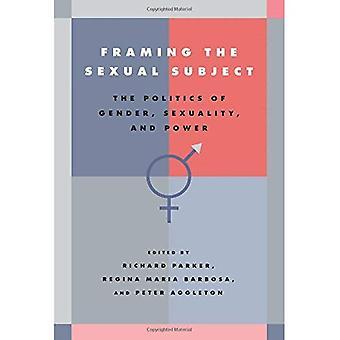 Kehystys seksuaalinen aihe: sukupuoli, seksuaalisuus ja valta politiikka