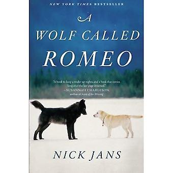 Een Wolf genaamd Romeo
