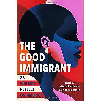 Der gute Einwanderer: 26 Autoren reflektieren Amerika