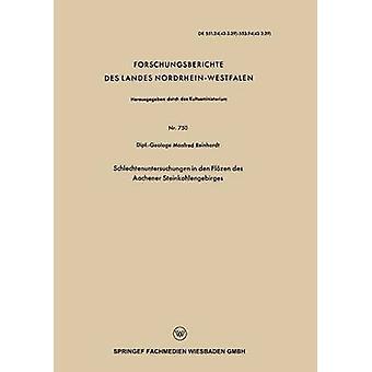 Schlechtenuntersuchungen in den Steinkohlengebirges Flzen des Aachener di Reinhardt & Manfred