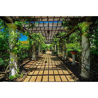 Wallpaper Mural Garden Walkway
