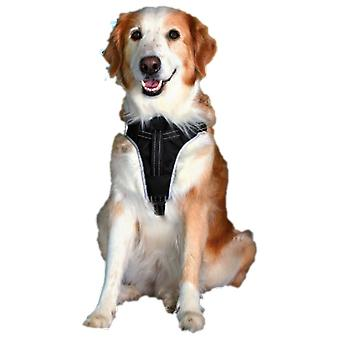 Trixie Petral seguridad Dog Protect,M: 50-65 cm,20 mm,Ng