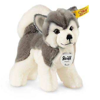 Steiff بيرني غراي والأبيض هوسكي الكلب