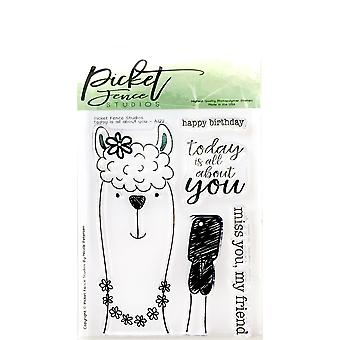 Picket Fence Studios Today Is All About You Clear Stamps