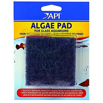 API Hand Held Algae Pad Per Vetro