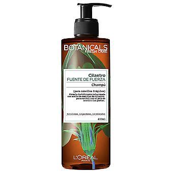 Kasvitieteet Shampoo Cilantro Kraftquellen 400 ml