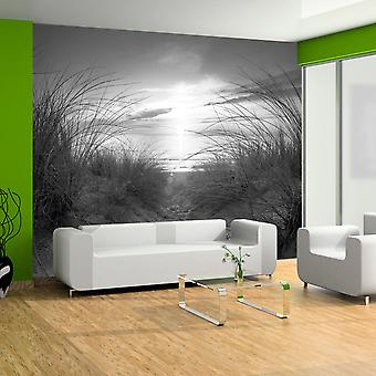 Fototapet - beach (black and white)